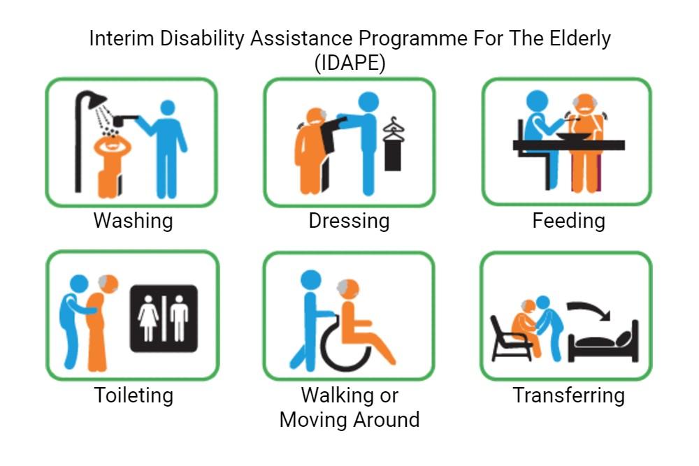 Interim Disability Assistance Programme For The Elderly (IDAPE)