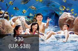 Seniors Enjoy Special Rates at Adventure Cove Waterpark™